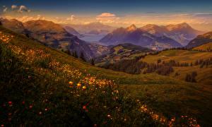 Картинки Швейцария Пейзаж Горы Речка Луга Рассветы и закаты Природа