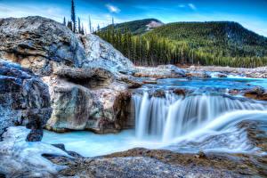 Картинки Водопады Леса Пейзаж HDRI Природа