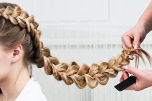 Картинка Вблизи Коса Волосы Рука Прически молодая женщина