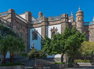 Фото Испания Дворец Лестница Дерево Las Palmas Gran Canaria Города