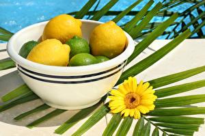 Фотография Цитрусовые Лимоны Герберы