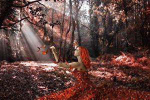 Фото Леса Бабочки Лучи света Рыжая Природа Девушки Фэнтези