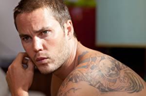 Обои Мужчины Лицо Татуировки Взгляд Taylor Kitsch Знаменитости фото