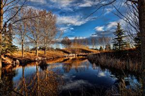 Фото Небо Осень Озеро Деревья Природа