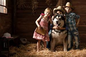Картинки Собаки Девочки Мальчишка Трое 3 Сене Шляпы Платья Рубашки Джинсы Аляскинский маламут ребёнок