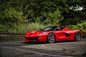 Фотография Ferrari Красный