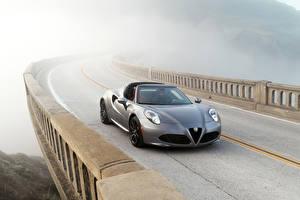 Обои Alfa Romeo Дороги Серебряный Кабриолета Туман 2016 Alfa Romeo 4C Spider Автомобили