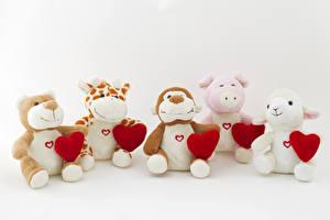 Фотографии День всех влюблённых Игрушки Плюшевый мишка Сердечко
