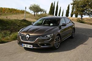 Фотографии Renault Металлик 2015 Talisman Авто