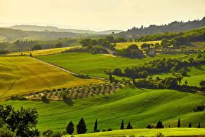 Фото Италия Пейзаж Поля Луга Тоскана Холмы Природа