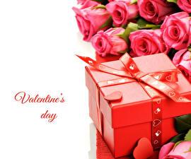 Фотографии День святого Валентина Розы Розовый Подарки Коробка Цветы