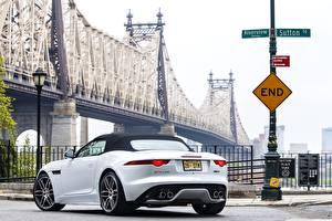 Картинка Мост Jaguar Сзади Белая 2015 F-Type R AWD US-spec машина