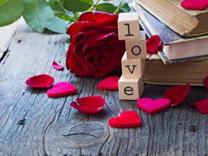 Фотография Розы День святого Валентина Любовь Лепестки Цветы