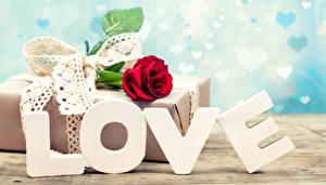 Фотографии Праздники День святого Валентина Любовь Розы
