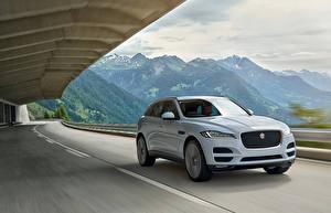 Фотография Jaguar Дороги Белый Металлик Едущий 2015 F-Pace Portfolio Автомобили