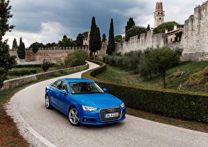 Фотография Дороги Audi Голубая Кусты 2015 A4 TFSI автомобиль