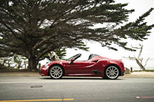 Фотография Альфа ромео Бордовые Металлик Кабриолета Сбоку 2016 Alfa Romeo 4C Spider автомобиль