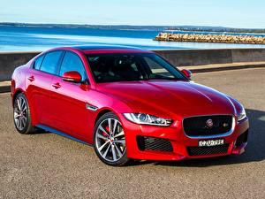 Картинки Jaguar Красных 2015 XE S авто