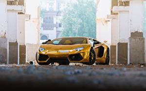 Обои Lamborghini Золотой Люксовые Спереди Родстер Aventador Roadster Машины