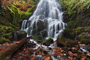 Обои Водопады Камни США HDR Листья Мох Fairy Falls, Wahkeena Falls, Columbia River Gorge, Oregon Природа фото