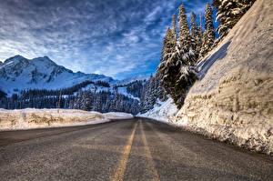 Фото Дороги Горы Асфальт Ель Природа