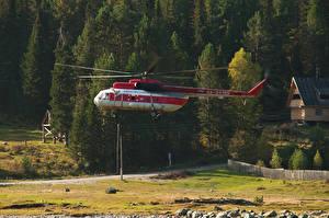 Фотографии Самолеты Вертолеты Леса Mi-8