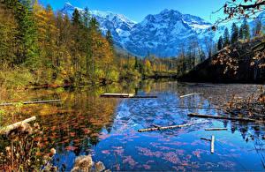 Картинка Австрия Пейзаж Горы Речка Леса Осень Salzkammergut Природа