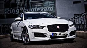 Фото Jaguar Белые Спереди 2015 XE R Sport авто