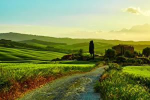 Картинки Италия Пейзаж Поля Луга Дороги Тоскана Холмы Природа