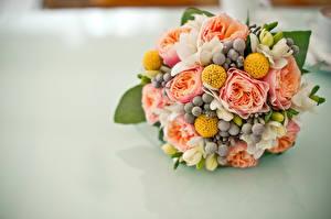 Фотографии Букеты Свадьба Цветы
