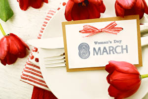 Картинки Праздники 8 марта Тюльпан Красная цветок