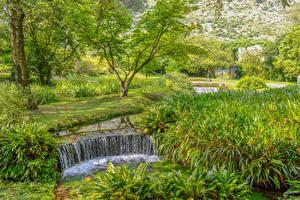 Картинки Италия Парки Водопады Лето Деревья Garden of Ninfa Природа