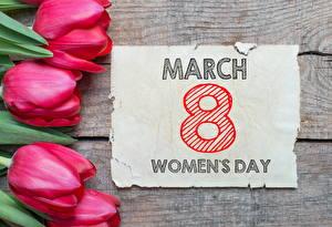 Фото Праздники 8 марта Тюльпан Цветы