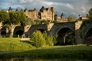 Фото Франция Крепость Мост Деревьев Кусты Carcassonne Города