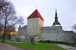 Картинка Эстония Крепость Таллин Virgin's Tower