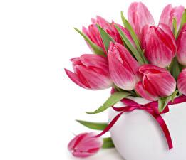 Фото Тюльпаны Вблизи Бордовый Ваза Цветы