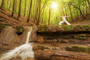 Картинка Лес Водопады Шатенка Природа Девушки