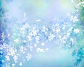 Картинки Лепестки Голубой Цветы