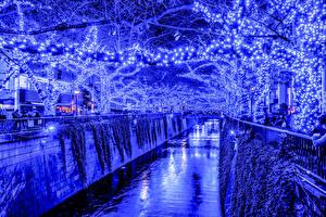 Фото Токио Япония Гирлянда Водный канал Ночь Ветвь
