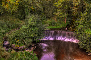 Фотографии Англия Парки Водопады Леса Yarrow valley park Природа