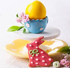 Фотографии Праздники Пасха Печенье Кролики Яйца Чашка