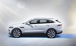 Обои Jaguar Сбоку Белый 2015 F-Pace S Автомобили фото