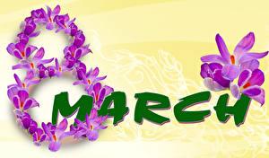 Фотография Праздники 8 марта Шафран Цветы