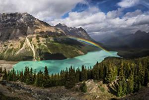 Обои Горы Пейзаж Леса Озеро страна кленового листа Радуга