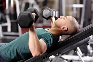Картинка Мужчины Фитнес Гантеля Тренируется спортивные