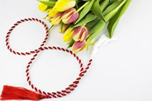 Картинка Праздники Международный женский день Тюльпан цветок