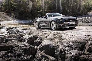 Обои Форд Черный Кабриолет 2015 Mustang GT Convertible EU-spe Машины