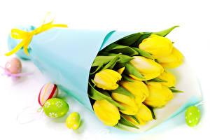 Картинки Букеты Тюльпаны Пасха Желтый Яйца Белый фон Цветы