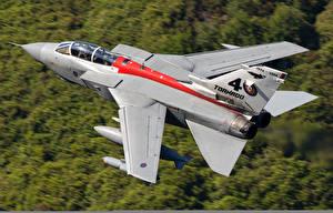 Картинки Самолеты Истребители Panavia Tornado