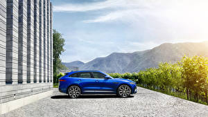 Обои Jaguar Синий Сбоку 2015 F-Pace S Автомобили фото